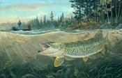Muskie Bay
