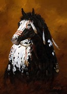Sioux War Pony