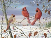 First Snow Cardinals