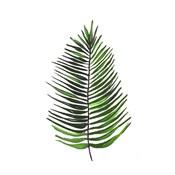 Leaves of the Tropics IV