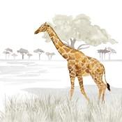 Serengeti Giraffe Square