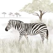 Serengeti Zebra Square