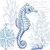 Coastal Sketchbook Sea Horse