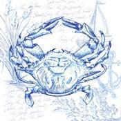 Coastal Sketchbook Crab