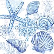 Coastal Sketchbook Shell Toss