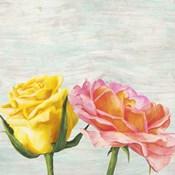 Funky Roses I