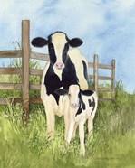 Farm Family Cows