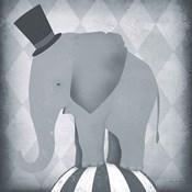 Circus Elephant Gray
