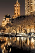 Central Park Glow II