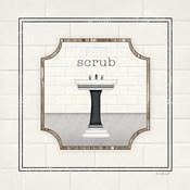 Sink Scrub