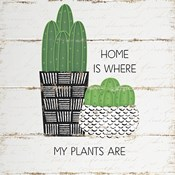 Home is Where My Plants Are