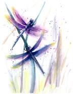 Dragonflies II
