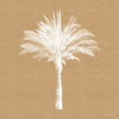 Burlap Palm Tree