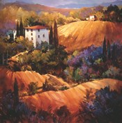 Evening Glow Tuscany