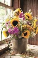 Wildflowers in Bucket
