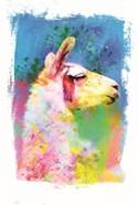 Rainbow Llama I