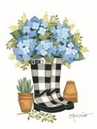 Hydrangeas Boots