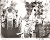 Modern Black & White Elephants