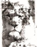 Modern Black & White Lion