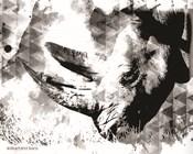 Modern Black & White Rhino