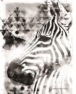 Modern Black & White Zebra