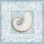 Sandy Shells Blue on Blue Nautilus
