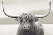 Highland Cow Neutral
