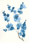 Blue Branch IV