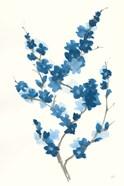 Blue Branch II