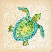 Sealife Turtle