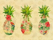 Triple Tropical Pineapple Collage