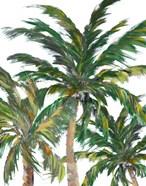 Tropical Trees on White III