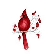 Winter Cardinal in Red II