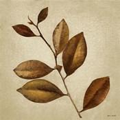 Antiqued Leaves II