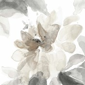 Soft May Blooms I