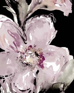 Happy Bloom on Black I