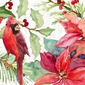 Poinsettia and Cardinal II