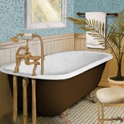 Afternoon Bath I