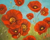 Field of Poppies I
