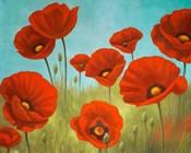 Field of Poppies II