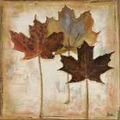Natural Leaves III