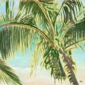 Bright Coconut Palm II