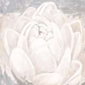 White Grey Flower II