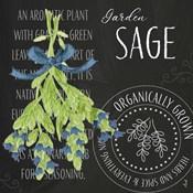 Garden Grown Herbs II