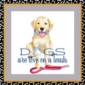 A Dogs Life I