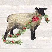 Christmas on the Farm V Sheep