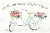 Boho Ride VI