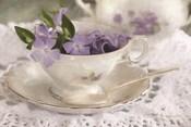 Violet Teacup II