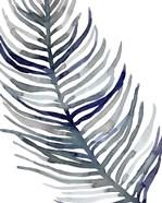 Blue Feathered Palm I