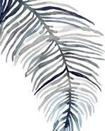 Blue Feathered Palm II